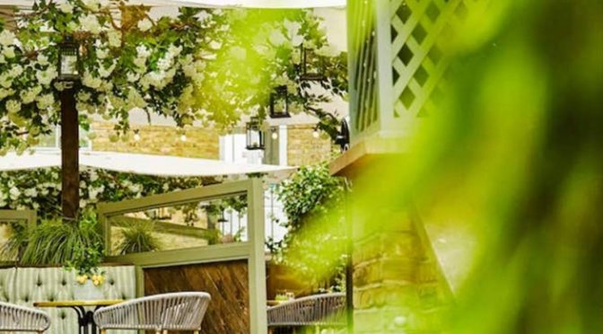An image of a greenish outside sitting area